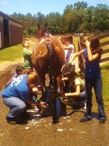 Campers giving Cisco a bath